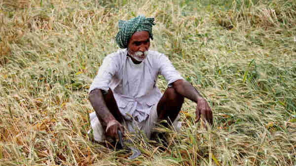 Farmer Organisations Angry Over Meagre Hike In MSP By Centre