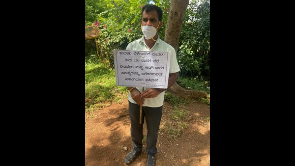 Mysuru: Tobacco Grower Protesting Alone Demanding To Provide Good Price For Tobacco
