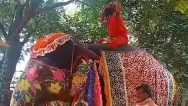 ಆನೆ ಮೇಲೆ ಯೋಗ ಮಾಡಲು ಹೋಗಿ ಉರುಳಿ ಬಿದ್ದ ರಾಮ್ದೇವ್: ವೈರಲ್ ವಿಡಿಯೋ
