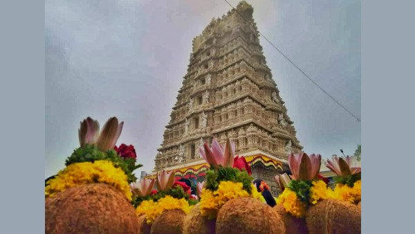 Chamundi Hills Set For Inauguration Of Mysuru Dasara 2020