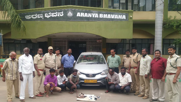 Five Arrested For Smuggling Sand Boa From Bengaluru To Mysuru