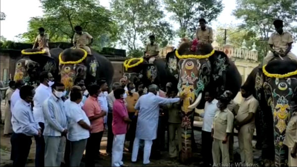 Mysuru: Dasara Jamboo Savari Elephants Returning To Forest On October 28