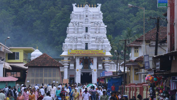 Large Number Of Devotees Visited Kukke Subramanya Temple For Ashlesha Seva