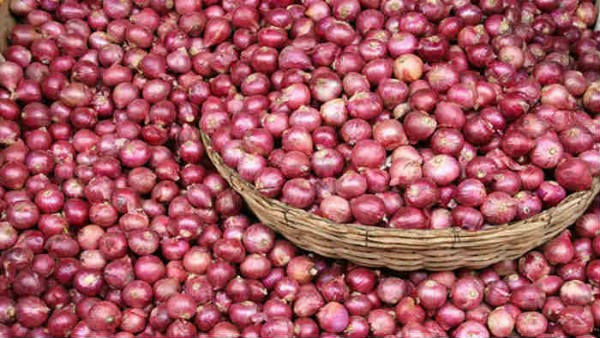 Central Government Bans Export Of Onion Seeds
