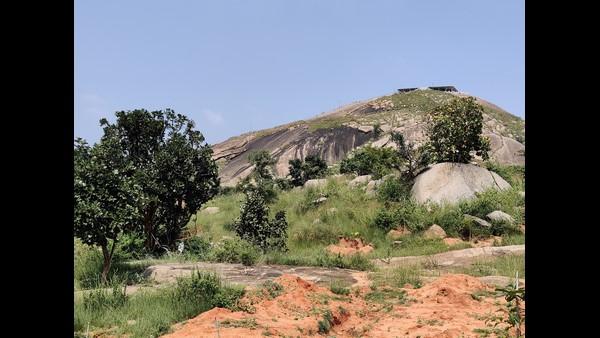ಮಂದಾರಗಿರಿಯಲ್ಲಿ ಶ್ರೀ ಶಿವಕುಮಾರ ಸ್ವಾಮೀಜಿ ಜೀವವೈವಿಧ್ಯ ವನ