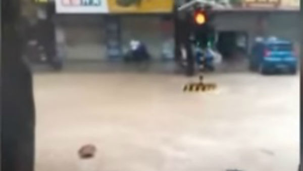 Viral Video Of Traffic Signal Being Washed Away During Hyderabad Flood