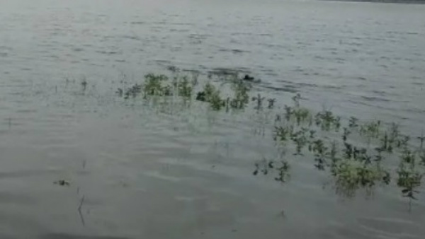 Villagers Decided To Remove Silt From Lake By Themselves