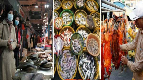 Covid-19: China Suspends Fish Imports From Indian Company