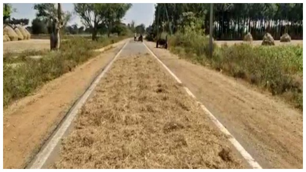 Not Use Road For Harvest Crop PWD Department Warned Farmers