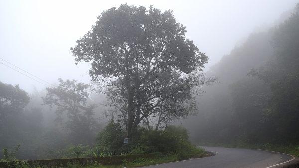 ಚಾರ್ಮಾಡಿ ಘಾಟ್ ವಾಹನ ಸವಾರರ ಗಮನಕ್ಕೆ