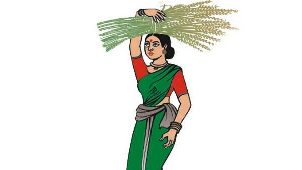 ಮೈಸೂರು ಮೇಯರ್ ಚುನಾವಣೆ: ದಳಪತಿಗಳೇ ಕಿಂಗ್ ಮೇಕರ್!