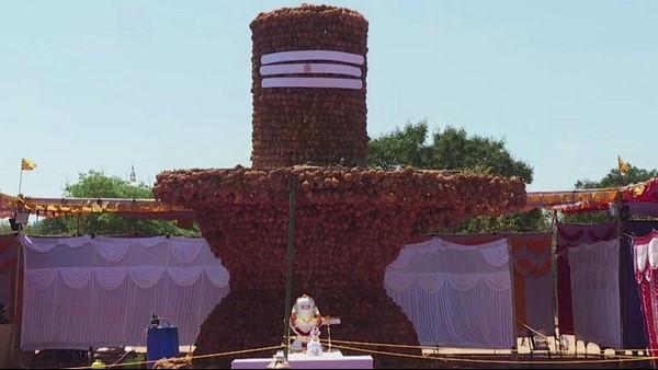 ಮಹಾ ಶಿವರಾತ್ರಿ ವಿಶೇಷ: ಮೈಸೂರಿನಲ್ಲಿ 21 ಅಡಿ ಎತ್ತರದ ತೆಂಗಿನಕಾಯಿ ಶಿವಲಿಂಗ
