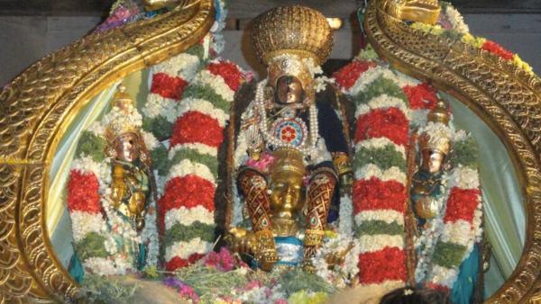 ಮಂಡ್ಯ; ಮೇಲುಕೋಟೆ ಚಲುವನಾರಾಯಣನಿಗೆ ಕಿರೀಟ ಧಾರಣೆ