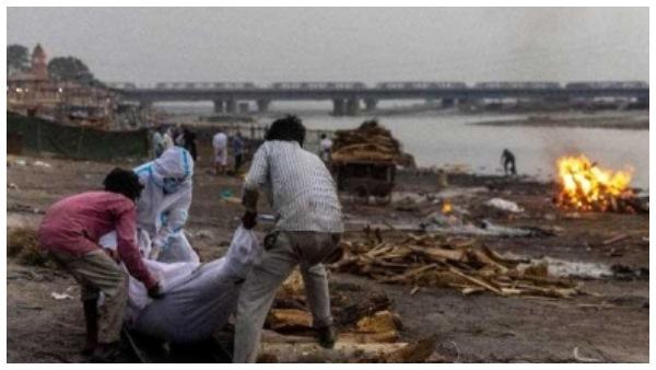 ಉತ್ತರ ಪ್ರದೇಶದ ಗಂಗಾ ನದಿ ಬಳಿ ಮತ್ತೆ ಮೃತದೇಹಗಳು ಪತ್ತೆ
