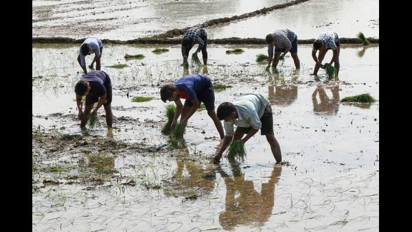 ಜೂನ್ ತಿಂಗಳಿನಲ್ಲಿ ಕರ್ನಾಟಕ ದಾಖಲಿಸಿದ ಮಳೆ ಪ್ರಮಾಣವೆಷ್ಟು?