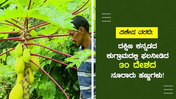 ದಕ್ಷಿಣ ಕನ್ನಡದ ಕುಗ್ರಾಮದಲ್ಲಿ ಫಲನೀಡಿದ 30 ದೇಶದ ನೂರಾರು ಹಣ್ಣುಗಳು!