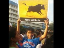 Tamilians Protest Support Jallikattu At Town Hall Bengaluru