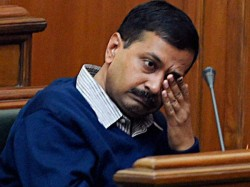 Mcd Have People Chosen Dengue Over Aap Twitter Taunts Kejriwal