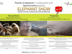 Elephant Show Movie Festival On April 30th