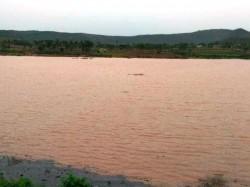 Good Rain Fills The Empty Lakes Of Chamarajanagar Lakes
