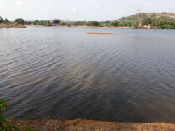 Cleaning Process Of Phalguni River Has Started In Mangaluru