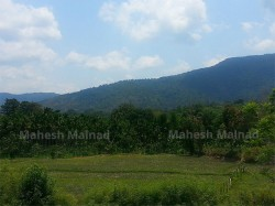 Malnad Girl S Musings Eagerly Awaiting For Monsoon