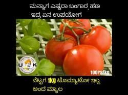 Tomato Price Hiked Including Social Media Jokes