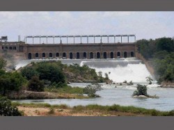 Cauvery Water Tamil Nadu Karnataka Government Not Bothering About Protests