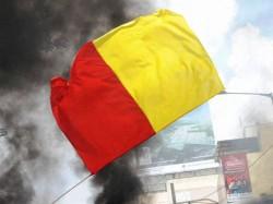 Do We Really Want Separate Flag For Karnataka Debate