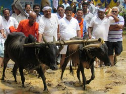 Krishi Habba Encourage Agriculture Ankola