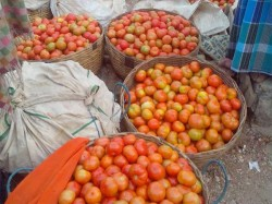 Man Arrested For Stealing Tomatoes Worth Rs 57