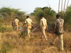 Coombing In Bandipur Forest To Search Tiger Hunters