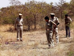 Bandipur Forest Four Tigers Killed In A Month