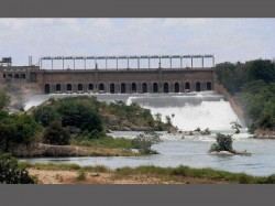 Masood Hussein Appointed As Chairman Of Cauvery Water Management Board