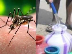 Pre Monsoon Rain 1000 Dengue Cases Reported