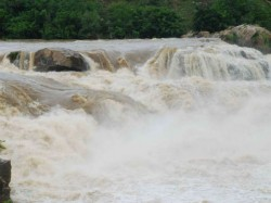 More Than Thousand Tourists Visiting Dhanushkoti Falls
