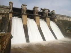 Karnataka Tamil Nadu Farmers Are Happy Courtesy Heavy Rainfall