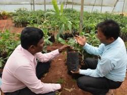 Good Response For Horticulture Dept Sasya Santhe