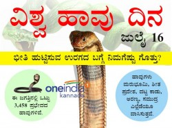 World Snake Day Interesting Things In Infographic