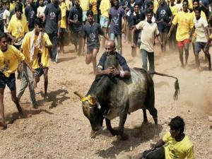 Jallikattu Protest Turn Ugly Anti National Elements Involvement Police