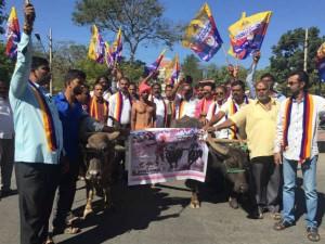 Ordinance Issued A Kambala Kaveri Mahadayi Issues Mysuru Karnataka Kavalu Pade Insist
