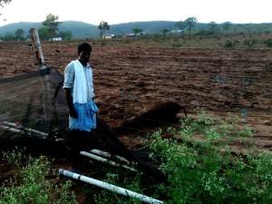 Bandipur Cow Dead For Electrocution In A Farm