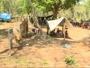 More Than 600 Tribal Families Living The Diddalli Forest Area Were Evicted
