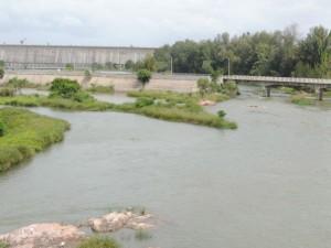 As Karnataka Releases Water To Tamil Nadu Farmers Stage Protest In Mandya