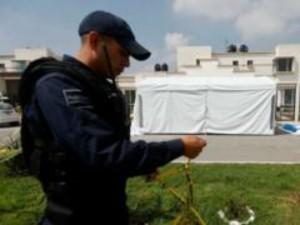 Masked Men Burst Into Children S Birthday Party In Mexico Killed 11