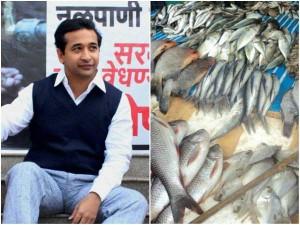 Mla Nitesh Rane Held For Throwing Fish At Govt Officer