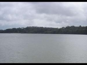 Heavy Rain Bhagamandala Water Level Increased In Cauvery River