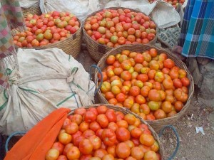 Man Arrested For Stealing Tomatoes Worth Rs 57 000